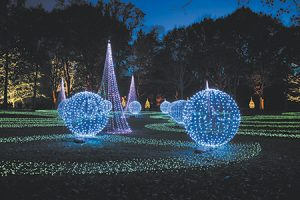 ae-ima-holiday-lights-grounds-450bp.jpg